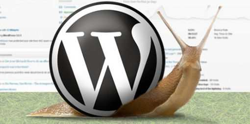 Wordpress is very slow